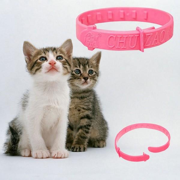 2x Halsband gegen Flöhe (Katze, Hunde)