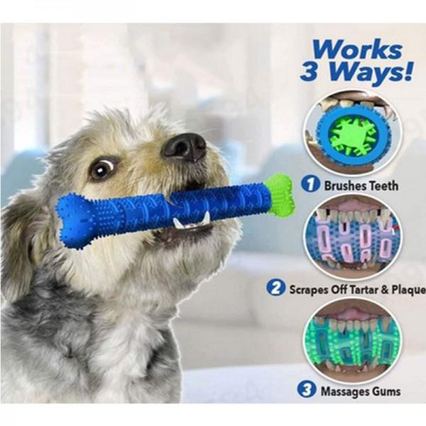 Hundezahnbürste